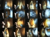 maya_collage